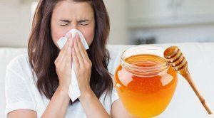 лечение гайморита медом