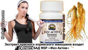 Женьшень для мужчин — препараты для потенции в таблетках