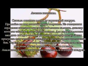 Гайморит. Лечение гайморита народными средствами