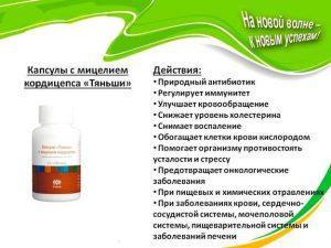 кордицепс применение