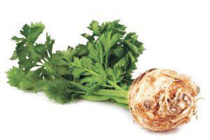 Сельдерей для потенции - рецепты, польза и вред, варианты употребления