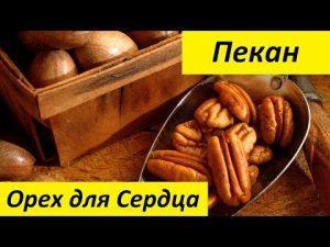 Орехи для потенции у мужчин: полезные рецепты