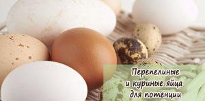 Польза сырых яиц куриных для мужской потенции