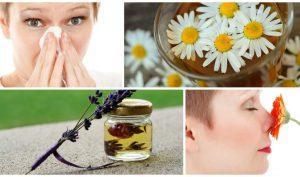 Как лечить гайморит в домашних условиях быстро: 6 основных правил