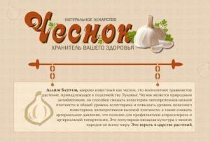 Чеснок для потенции мужчин - информация о полезных свойствах и рецепты