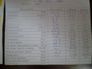 Обследование при простатите: анализ мочи и крови