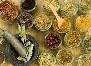 Народные средства для печени: отвары и настойки